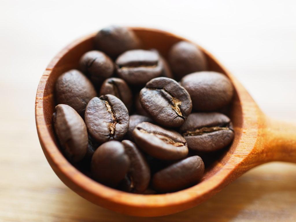 エルサルバドル農園の豆